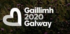 GAILLIMH 2020